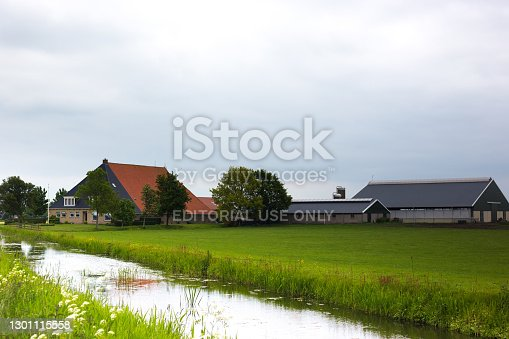 Langweer, Friesland, Netherlands: A traditional farm in springtime outside Langweer, Friesland.