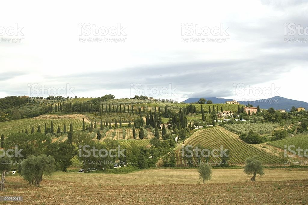 Lanscape from Montepulciano stock photo