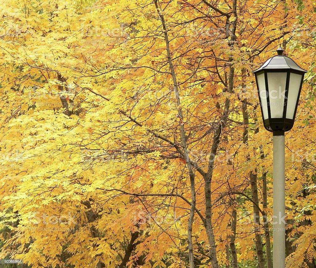 Lantern against autumn yellow trees royalty-free stock photo