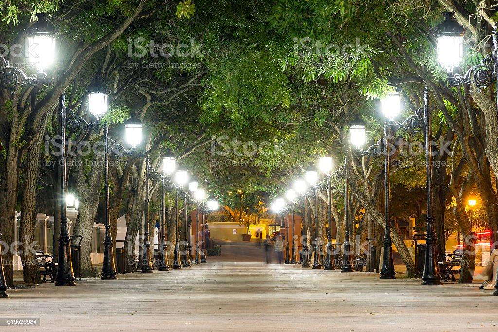Lantern avenue stock photo