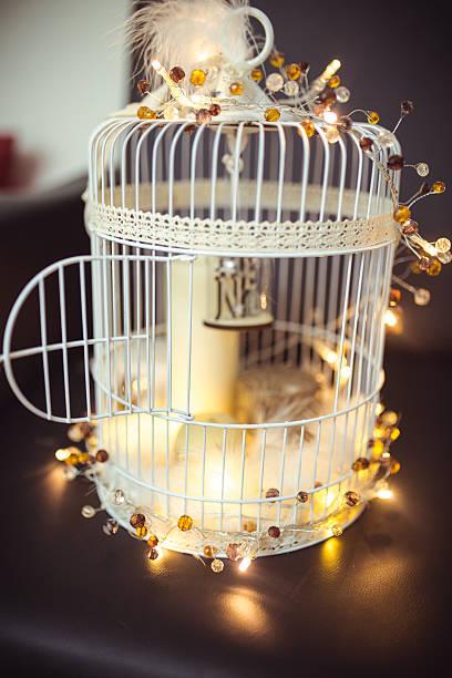 lantern cage bird sitting at twilight - cage animal nuit photos et images de collection