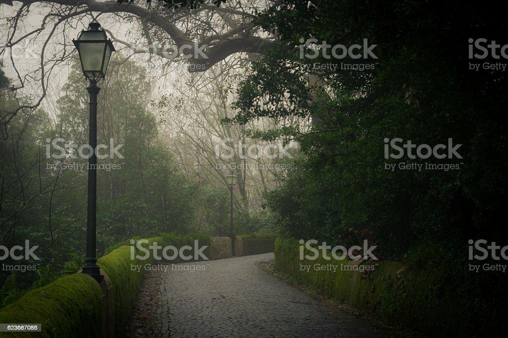 Lantern foto