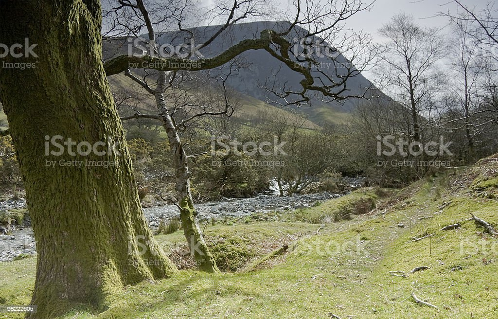 Lanthwaite paesaggio, Grasmoor e whiteside in background foto stock royalty-free