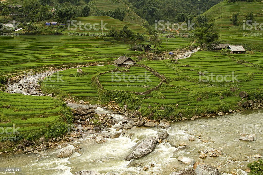 Lao Cai Village royalty-free stock photo