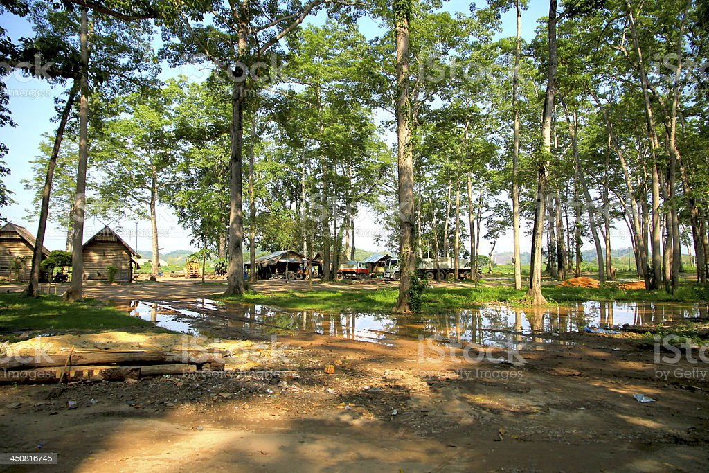 Laos Forest Landscape royalty-free stock photo