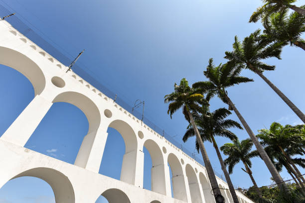 Lapa Arch and Palm Trees – Foto