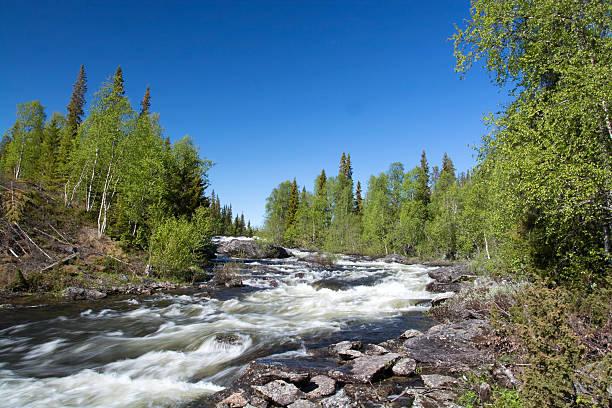 Lappland, Vaesterbotten, Schweden – Foto