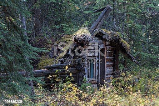 istock Lapsed hut 1296689205
