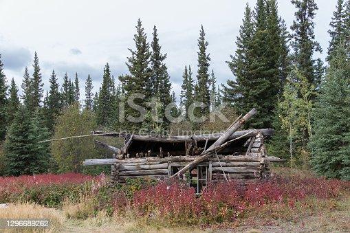 istock Lapsed hut 1296689262