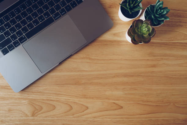Laptop and succulent in pot plant on wooden table top view. Laptop and succulent in pot plant on wooden table top view. high section stock pictures, royalty-free photos & images