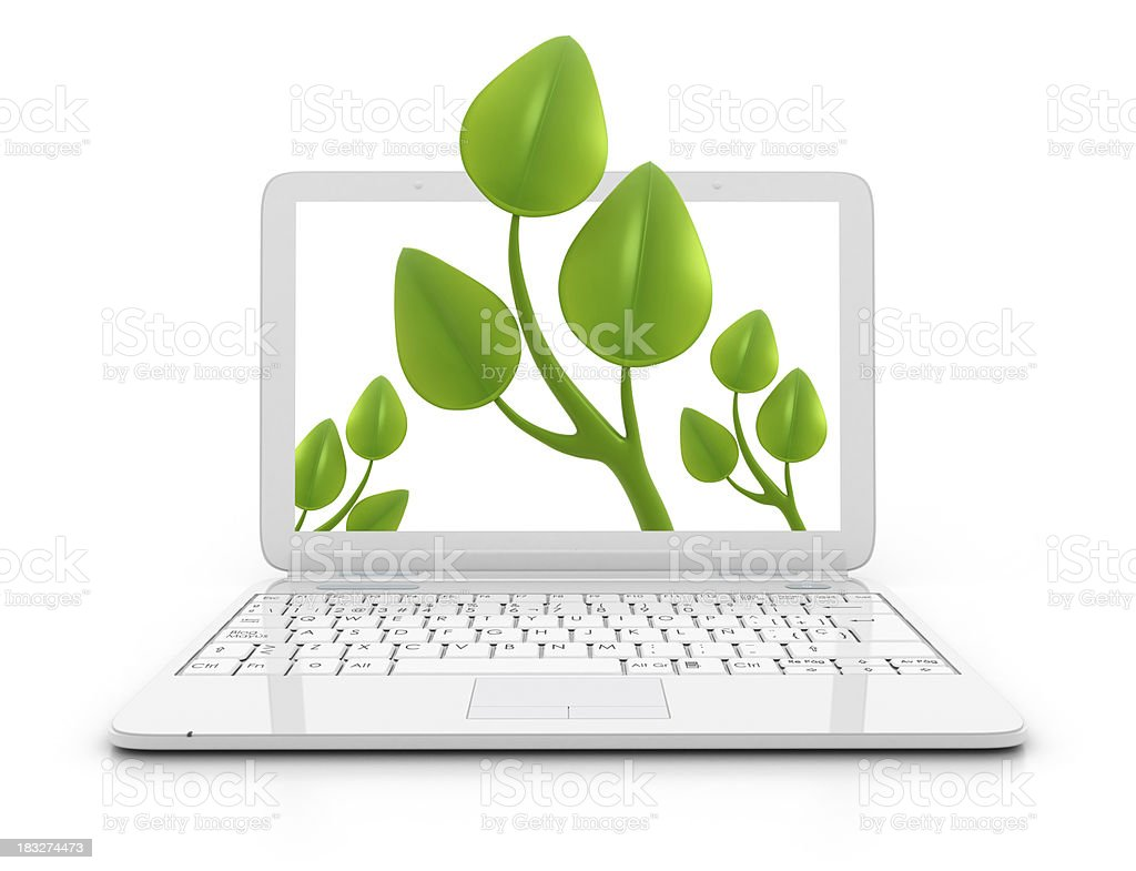 Laptop - Leaves royalty-free stock photo