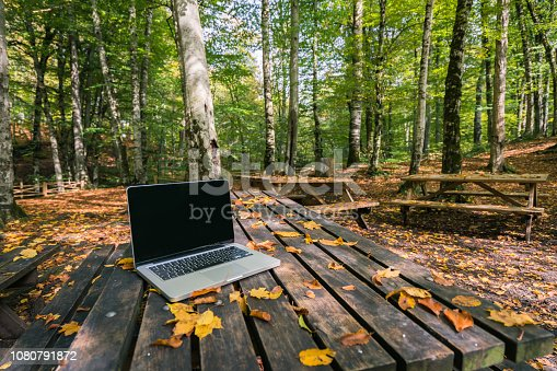 Laptop  on the park bench in autumn