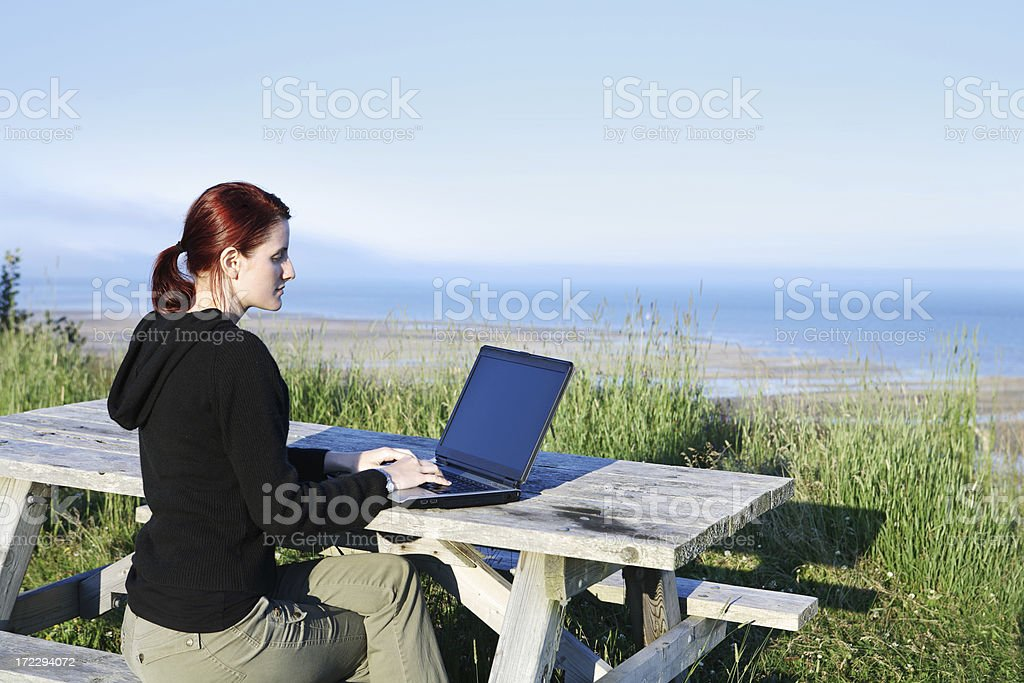 Laptop outdoors royalty-free stock photo