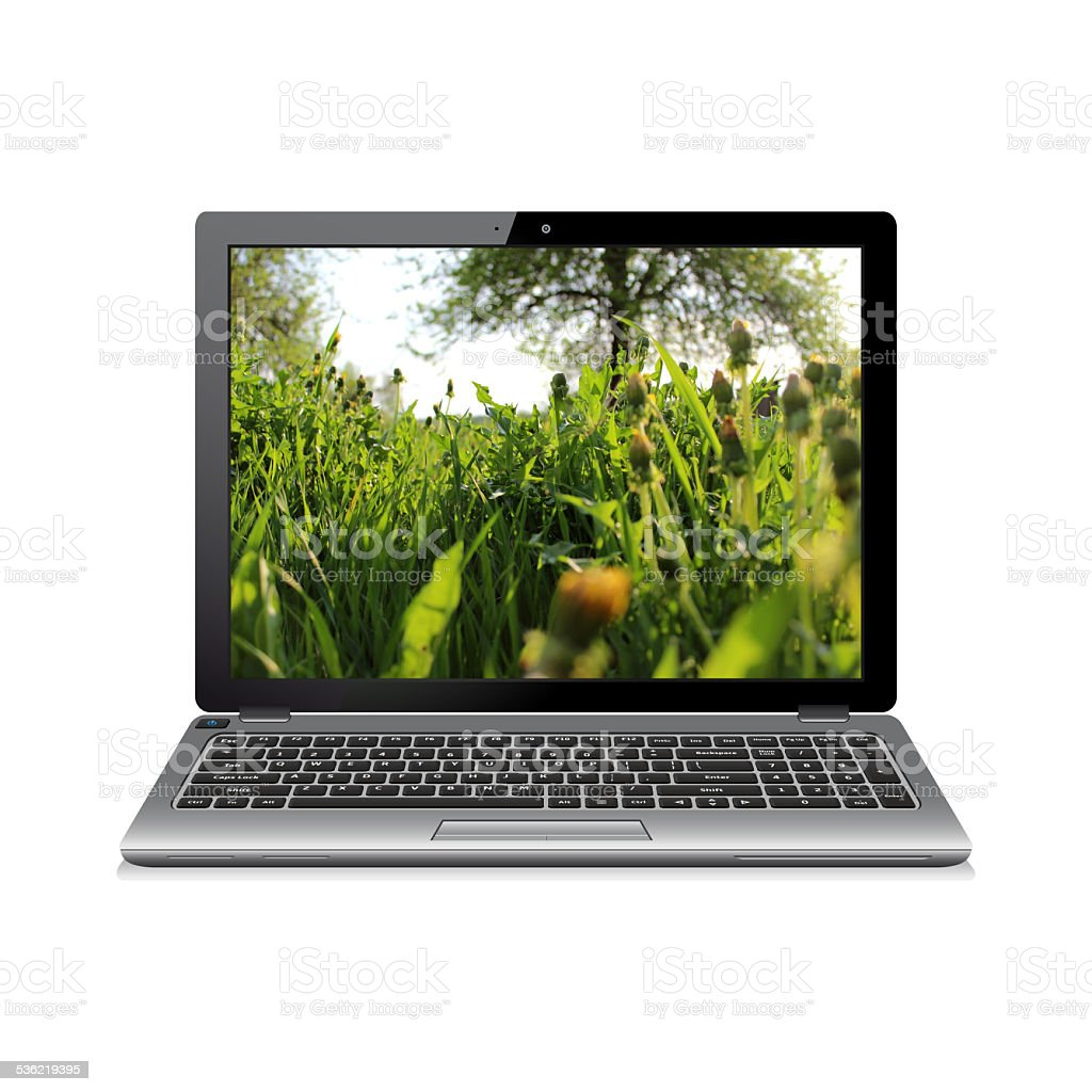 Laptop with dandelions on screen stock photo