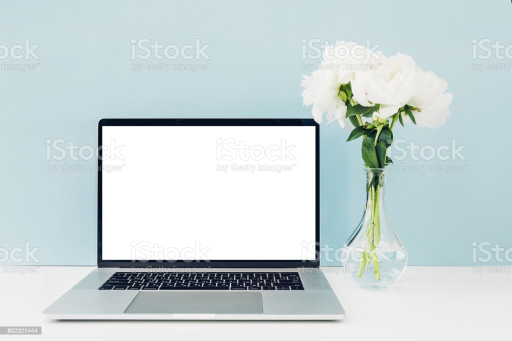 Laptop with white blank screen and flowers in vase on table on blue background. mock up stock photo
