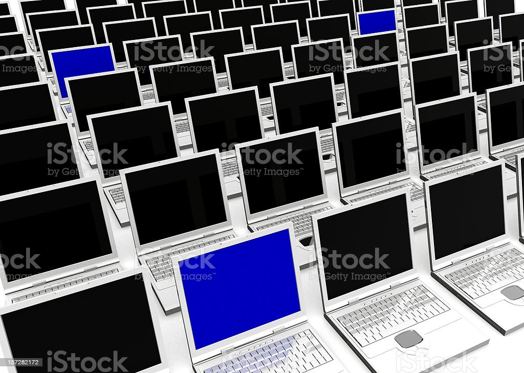 Laptops - Computer Network royalty-free stock photo