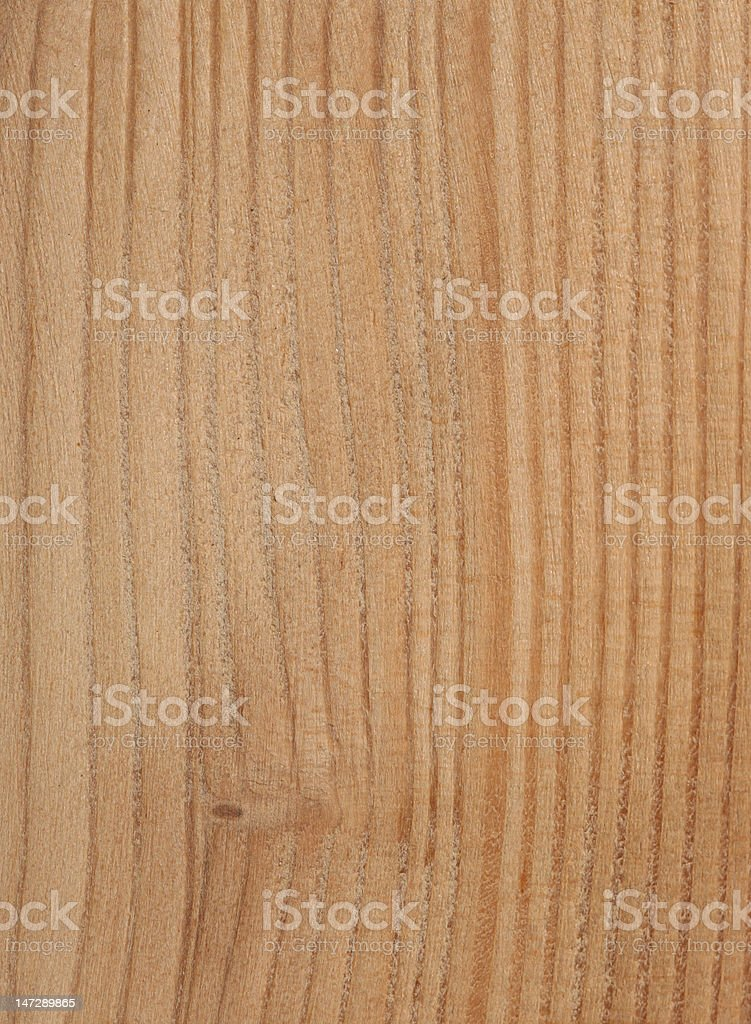 Larch Tree Texture stock photo