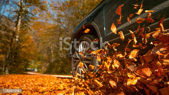 LOW ANGLE, CLOSE UP, DOF: Large 4x4 vehicle drives along a road full of beautiful brown fallen leaves. Cinematic shot of dry leaves flying up in the air as the metallic blue SUV drives through forest.