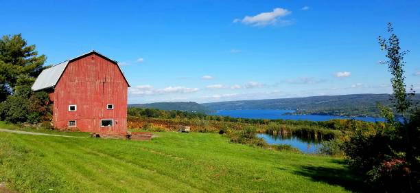 Large Abandoned Red Barn with Waters in Background During Autumn stock photo