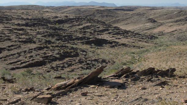 Grandes planícies africanas. Solo rachado seco e rochas afiadas - foto de acervo