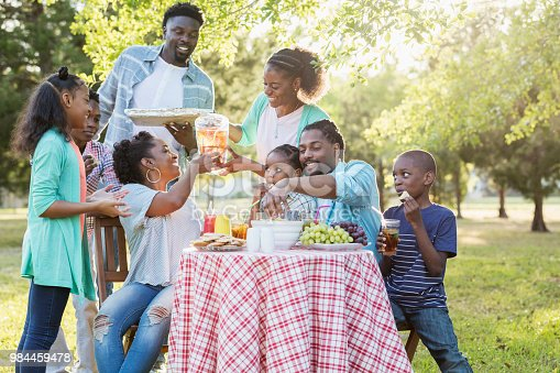 1091098220istockphoto Large African-American family having backyard cookout 984459478