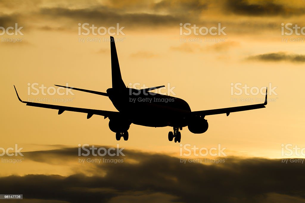 Large Airliner royalty-free stock photo