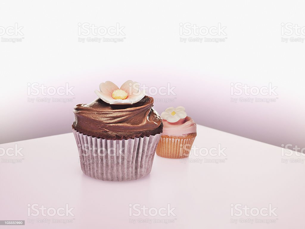 Large and small cupcakes with flower decorations stock photo