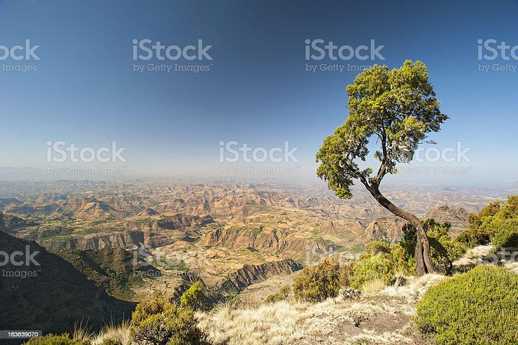 Simien-Gebirge in Äthiopien – Foto