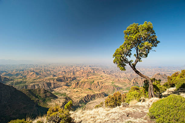 A large and wide mountain range in Ethiopia  stock photo