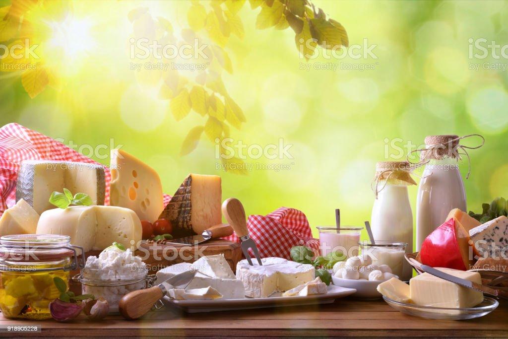 Gran surtido de productos lácteos artesanales en la naturaleza - foto de stock