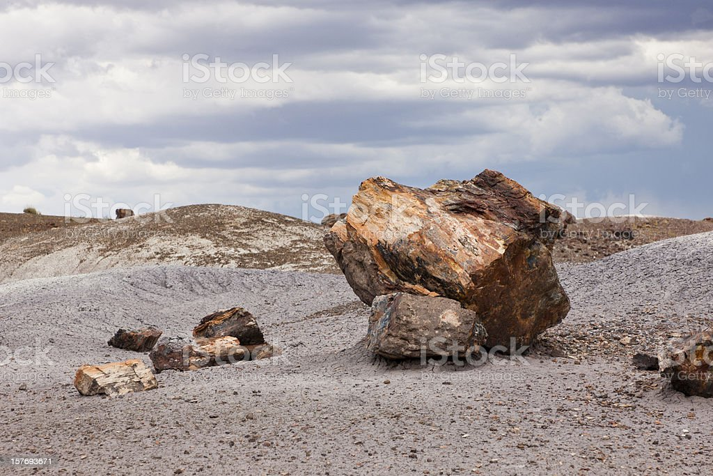 Large Boulders of Petrified Wood, National Park royalty-free stock photo