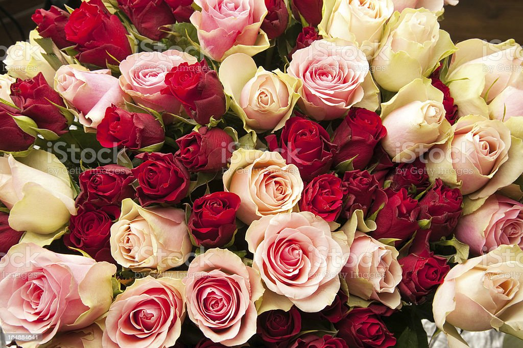 Large bouquet of roses. royalty-free stock photo