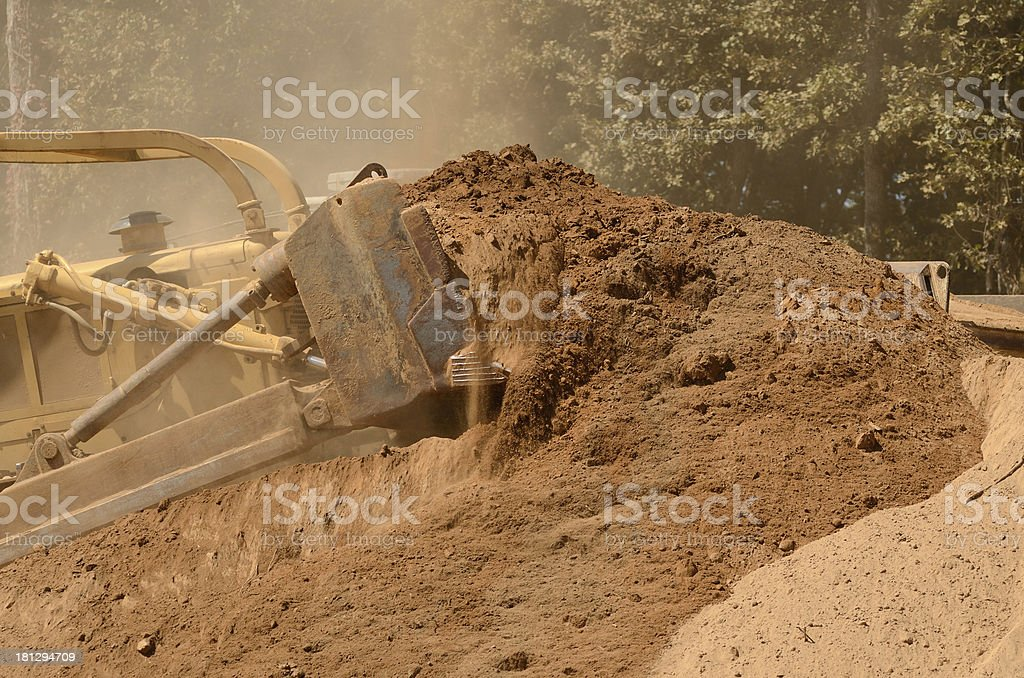 Large Bull royalty-free stock photo
