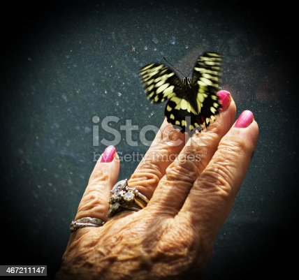 999676880 istock photo Large butterfly on woman's hand 467211147