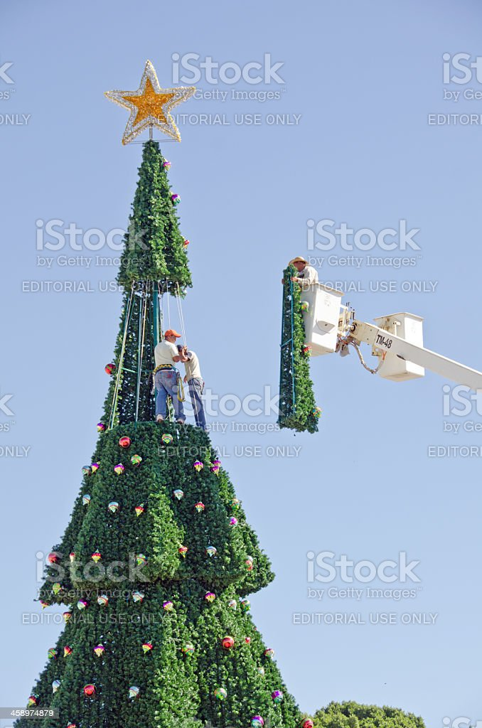 Large Christmas Tree royalty-free stock photo
