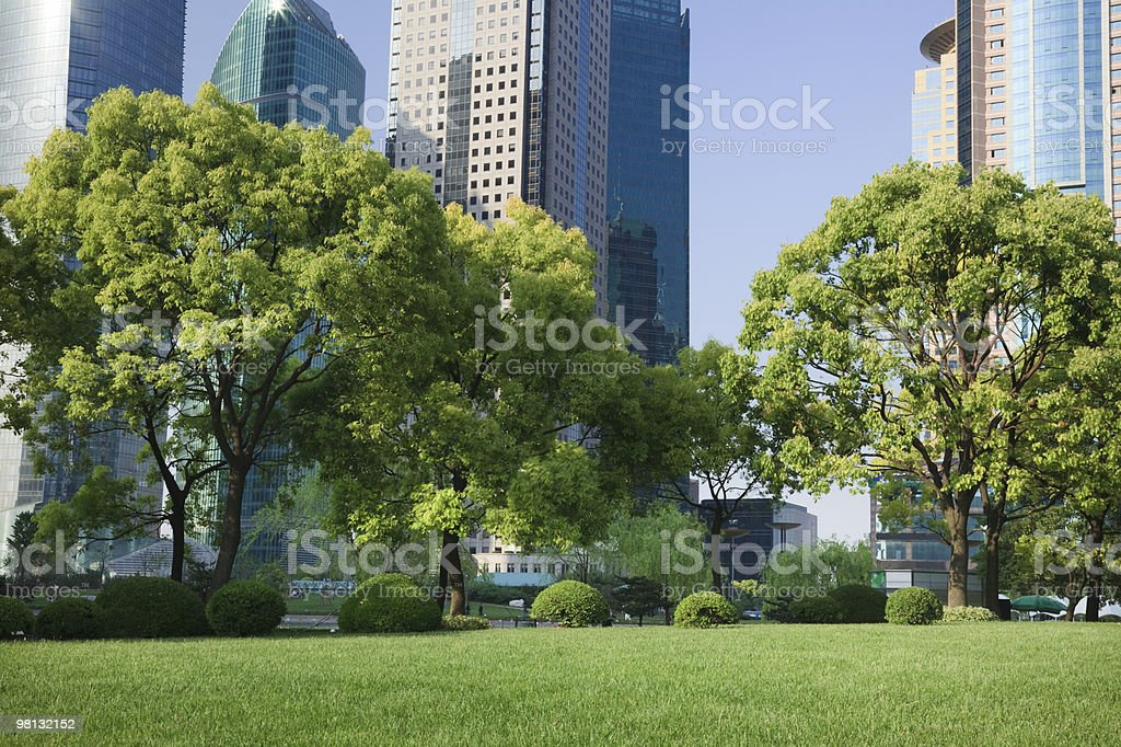 Large city buildings behind a park full of green trees royalty-free stock photo