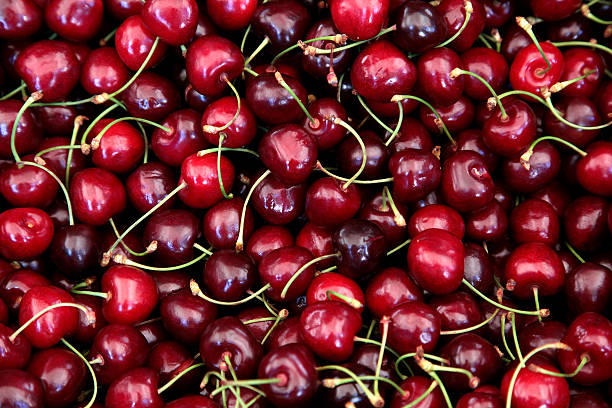 Large collection of fresh red cherries stock photo