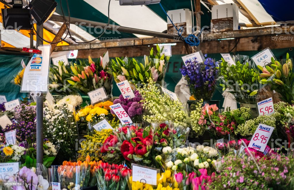 Seleção de grande e colorida de várias plantas e flores que vi à venda dentro de uma tenda de flor em um mercado ao ar livre. - Foto de stock de Amarelo royalty-free