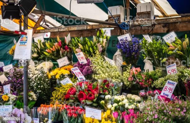 Foto de Seleção De Grande E Colorida De Várias Plantas E Flores Que Vi À Venda Dentro De Uma Tenda De Flor Em Um Mercado Ao Ar Livre e mais fotos de stock de Amarelo