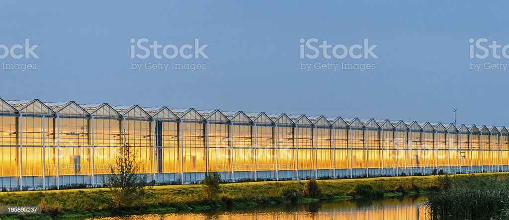 Large commercial greenhouse stock photo