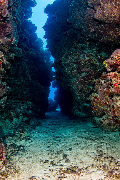 Large crack in an underwater coral reef stock photo