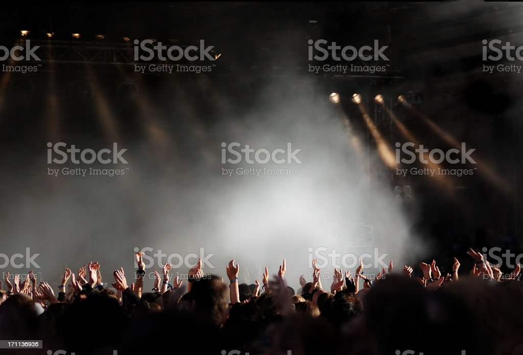 A large crowd at a concert highlighted by a spotlight royalty-free stock photo