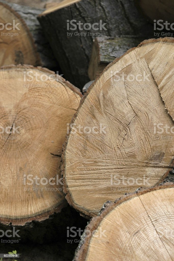 Large Cut Logs stock photo