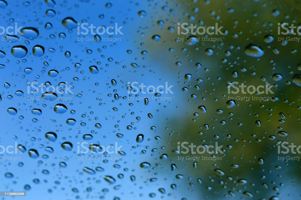 Large drops of water on transparent glass after a rain, reflection of trees in drops, a bright blue background stock photo
