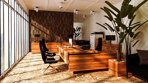 große, elegante und moderne büro mit großen fenstern - eingangsbereich teppich stock-fotos und bilder