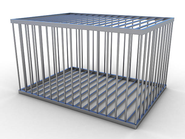 A large empty animal cage isolated on a white background stock photo