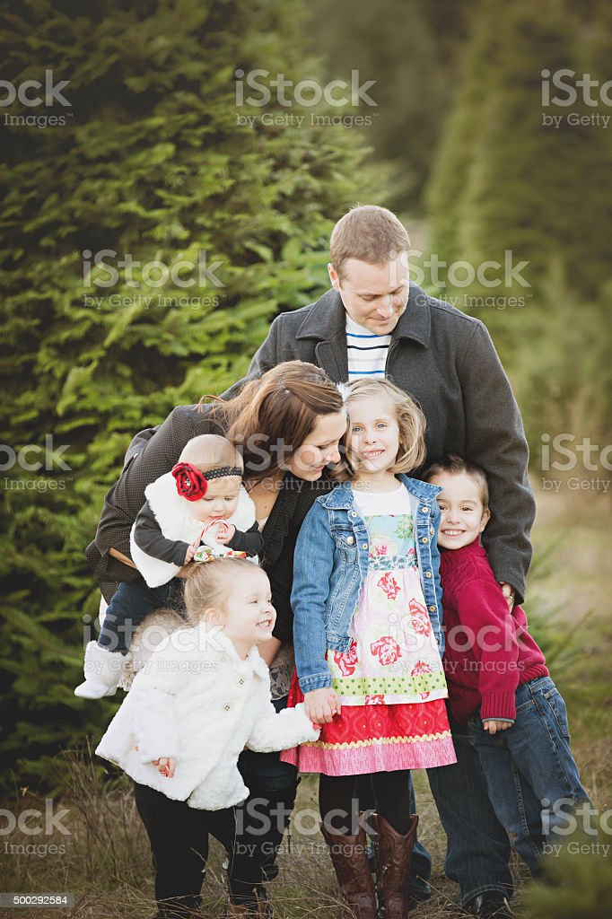 Large Family Christmas Card Photo In Christmas Tree Farm Stock Photo Download Image Now Istock