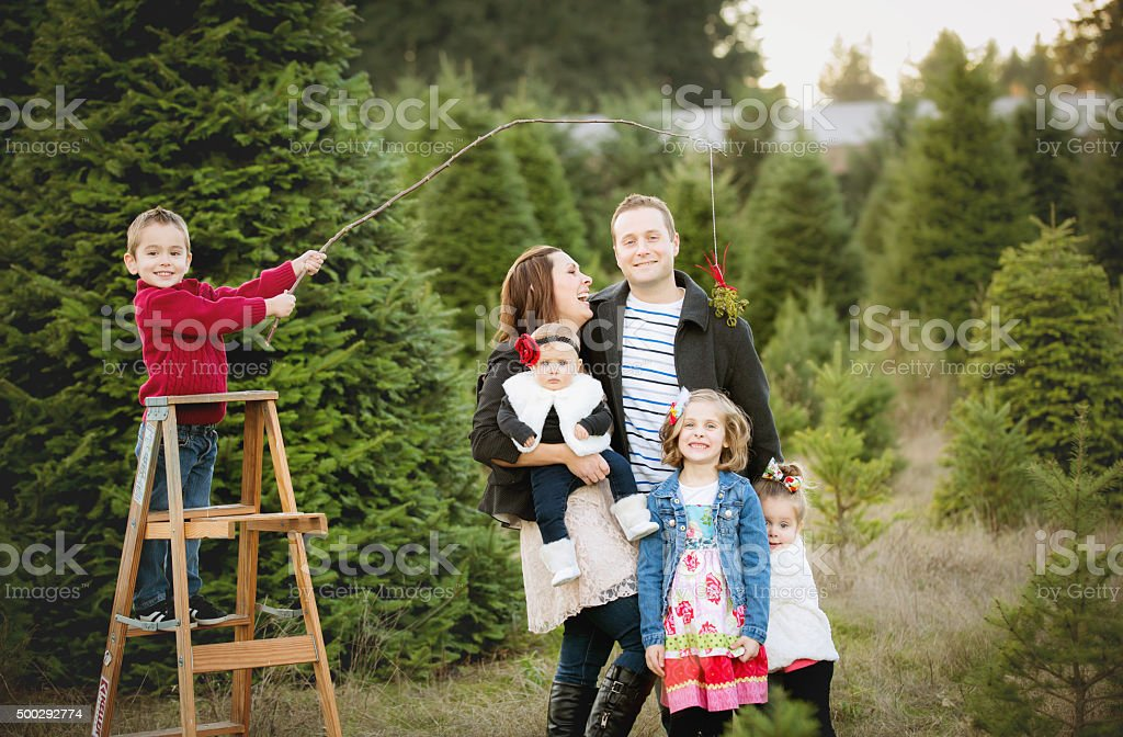 Large Family Christmas Card photo in Christmas Tree Farm . stock photo