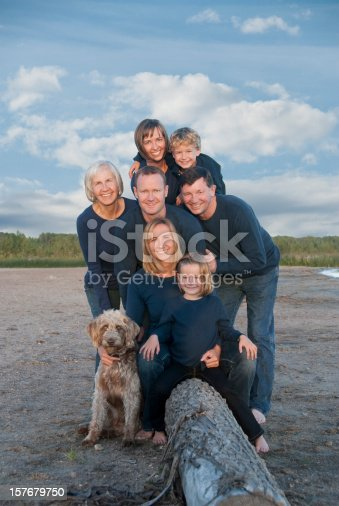istock Large family portrait on beach with dog 157679750