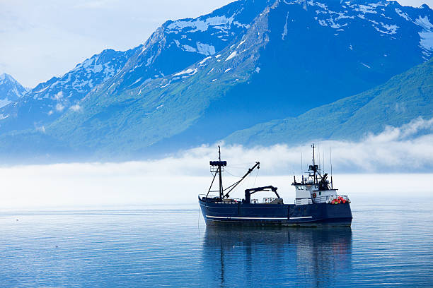 large fishing boat anchored in valdez, alaska bay - fishing industry stock pictures, royalty-free photos & images